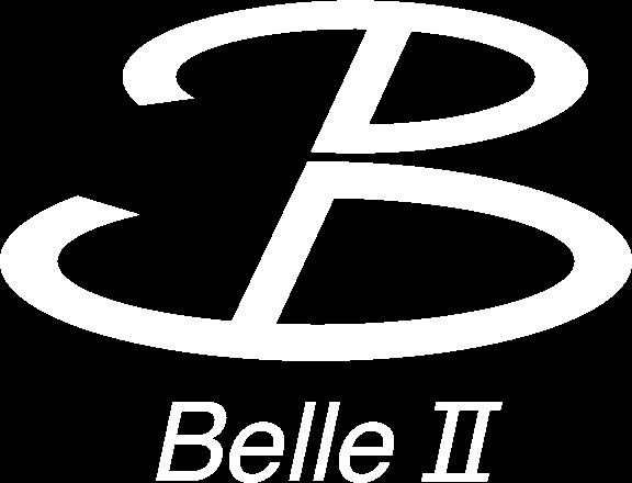 belle2-logowhite